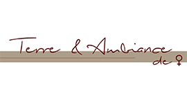 Logo Terre et Ambiance (Brin-sur-Seille)